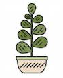 Forme de buisson